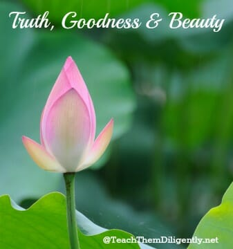 Truth, Goodness and Beauty | Teach Them Diligently Blog