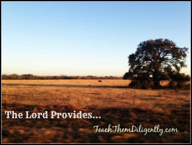The Lord Provides