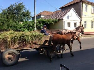 Romania Gypsy Cart