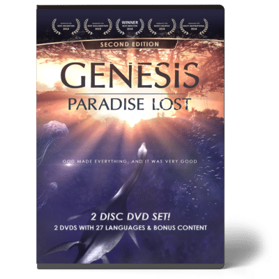 genesis dvd creation today